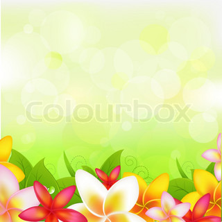 Natural Background With Garland From Plumeria, Vector Illustration