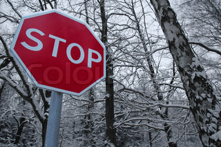 stop sign in front of winter forest