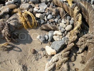 number 5 on a stone beside old ropes on beach