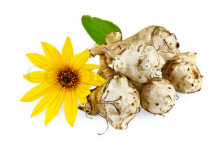 Five tubers of Jerusalem artichoke with a yellow flower isolated on white background