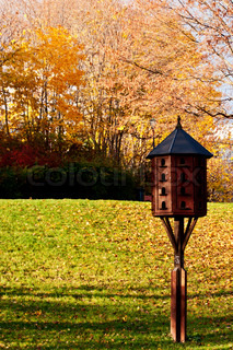 Bird house in city park at fall autumn