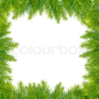 Christmas Tree Branches Border, isoleret på hvid baggrund , Vector Illustration