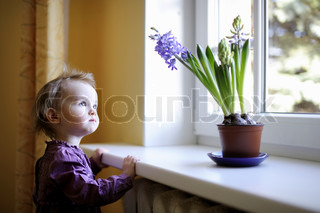 Adorable toddler girl by the window with the blue flowers