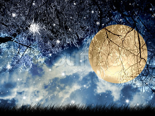 Full moon at winter night in wood