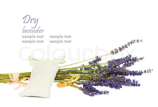 dry lavender bunch and textile bag isolated on white bakcground