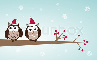 Owl couple in Christmas hats on a tree branch