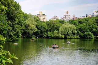 Boating in New York City Central Park on a hot summer day