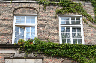 Windows of old houses