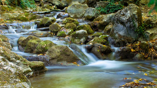 The beautiful running water in forest