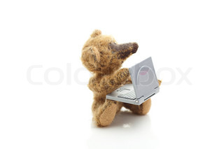 teddy bear and miniature laptop  isolated on white