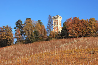 Historic house on the hill among trees and vineyards at fall in Piedmont, Northern Italy