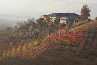 House on top of the hill and beautiful autumnal vineyards in Piedmont, Northern Italy