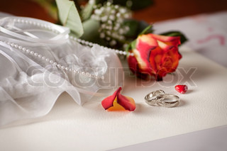Wedding detail with beautiful white gold rings