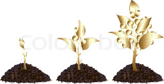 Life process of golden tree with golden coins, Isolated On White