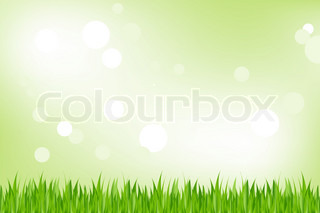 Background Of Green Grass, On Green Background With Bokeh, Vector Illustration