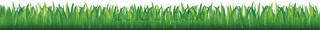 Background Of Green Grass, Isolated On White Background, Vector Illustration