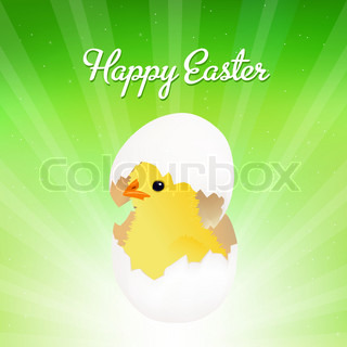 Chicken Hatched From Egg, Isolated On Green Background With Beams, Vector Illustration