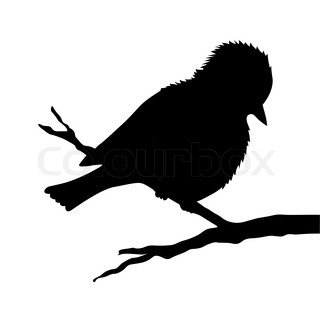 bird on branch silhouette on white background