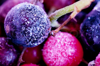 Macro view of frozen berries: blackcurrant, redcurrant, blueberry