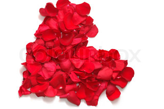 Heart from petals of red roses
