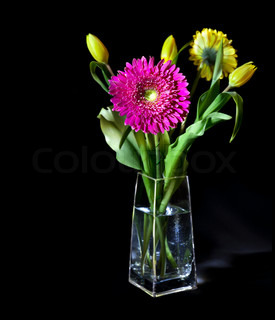 Bright flower bouquet in glass vase isolated over black background