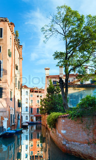 Nice summer venetian canal view with tree, moon in sky, and reflections Venice, Italy