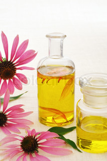 Coneflower essential  oil in bottle - stillife