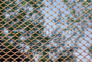 Chain link rusty fence on a green foliage background