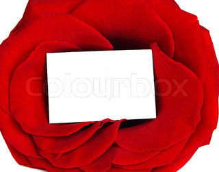 Rose frame & blank greeting card isolated on white background, conceptual image of love & Valentine's day holiday