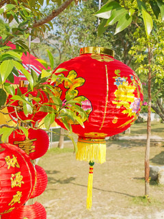 Traditional chinese paper lantern in the garden