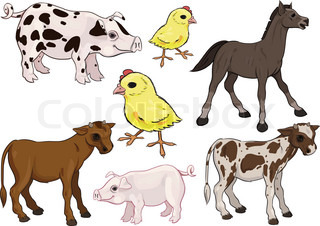 Horse, Pig, Cow, Chicken