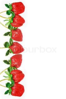 line of strawberry
