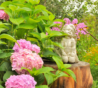 White Angel Statue on Tree Stump i haven med Pink Hydrangea blomster