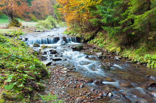 Rocky Stream, Running Through Autumn Mountain Forest