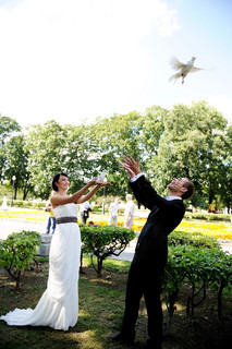 Bride and groom setting pigeons free during the wedding walk