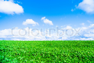 Landscape farm grassland stock photo colourbox - Impressive house with tranquil environment to get total relaxation ...