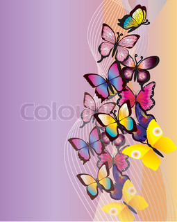 Beautiful vector illustration with colorful butterfly