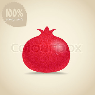 Cute fresh red pomegranate illustration