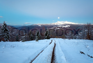 Winter night mountain dirty road, forest with last autumn foliage and Moon on twilight sky Petros and Goverla Mountain, Carpathian, Ukraine
