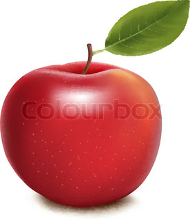 Fresh red apple on white background. Vector