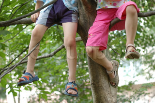 Girl and boy sitting on a branch