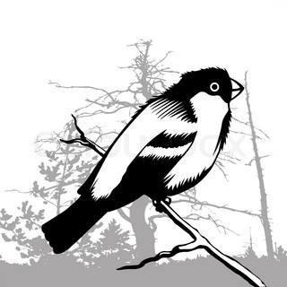 bird silhouette on wood background