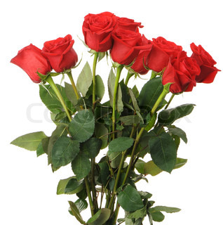 Bouquet of red roses It is isolated on a white background