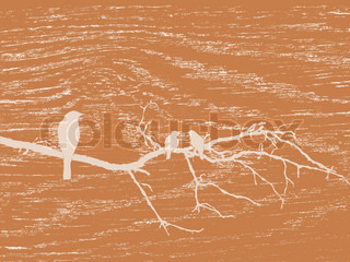 birds silhouette on wood background