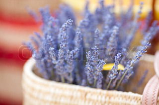 dried lavender flowers in basket at the fair
