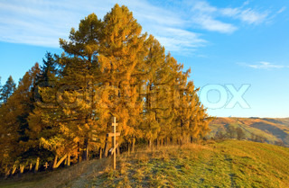 Autumn morning mountain view with wooden cross on hill Carpathian, Ukraine
