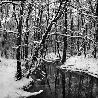 Winter landscape with small river