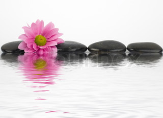 An image of black stones with reflections in water