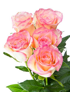 Bouquet with pink roses isolated on white