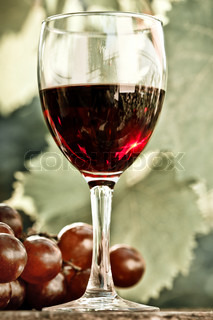 Red wine glass and bunch of grapes against vineyard